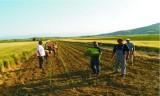 Η νέα ΚΑΠ θα αλλάξει το χάρτη της γεωργίας